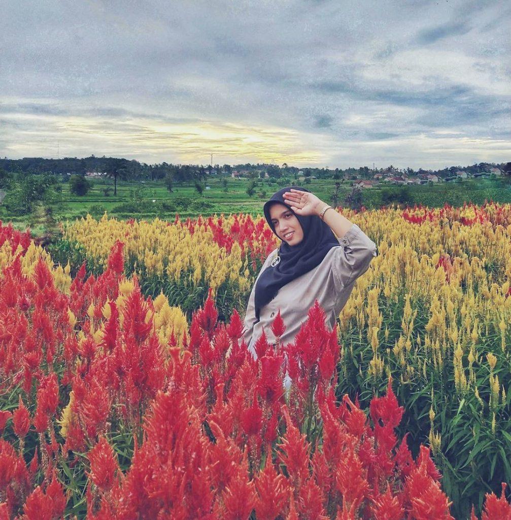 berfoto di tengah bunga by @lainameutia