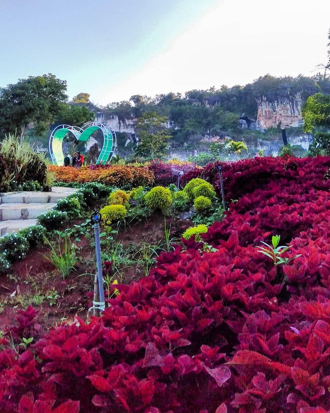 taman bunga wagos