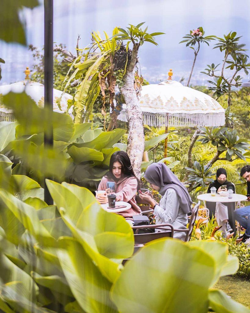 area outdoor yang penuh hijau hijau