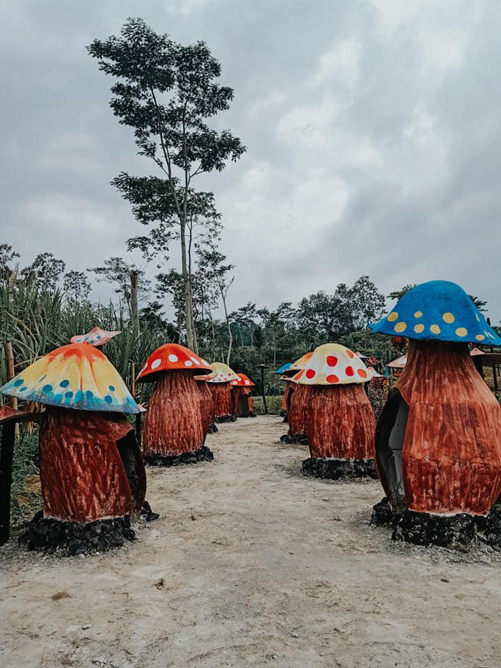 rumah rumahan jamur