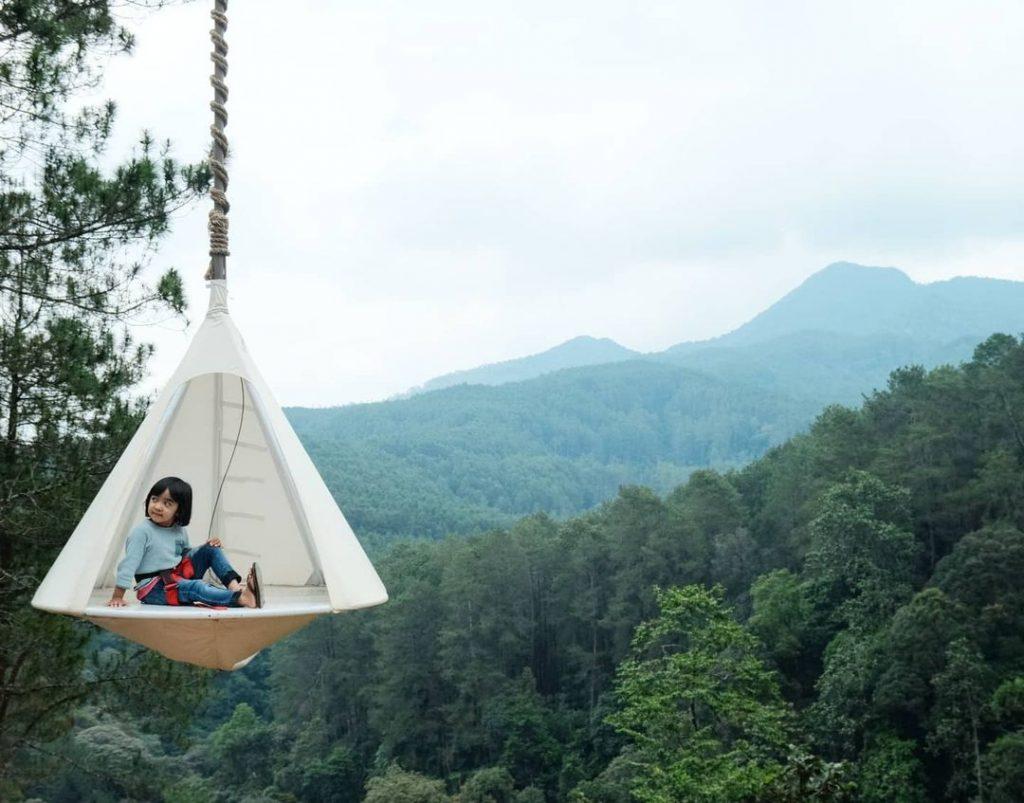 lokasi pinus forest view