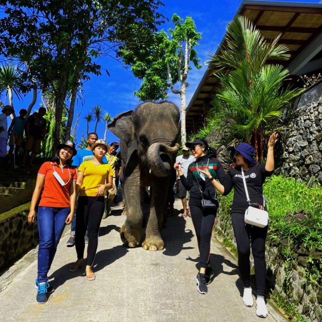 HTM tasta wildlife park
