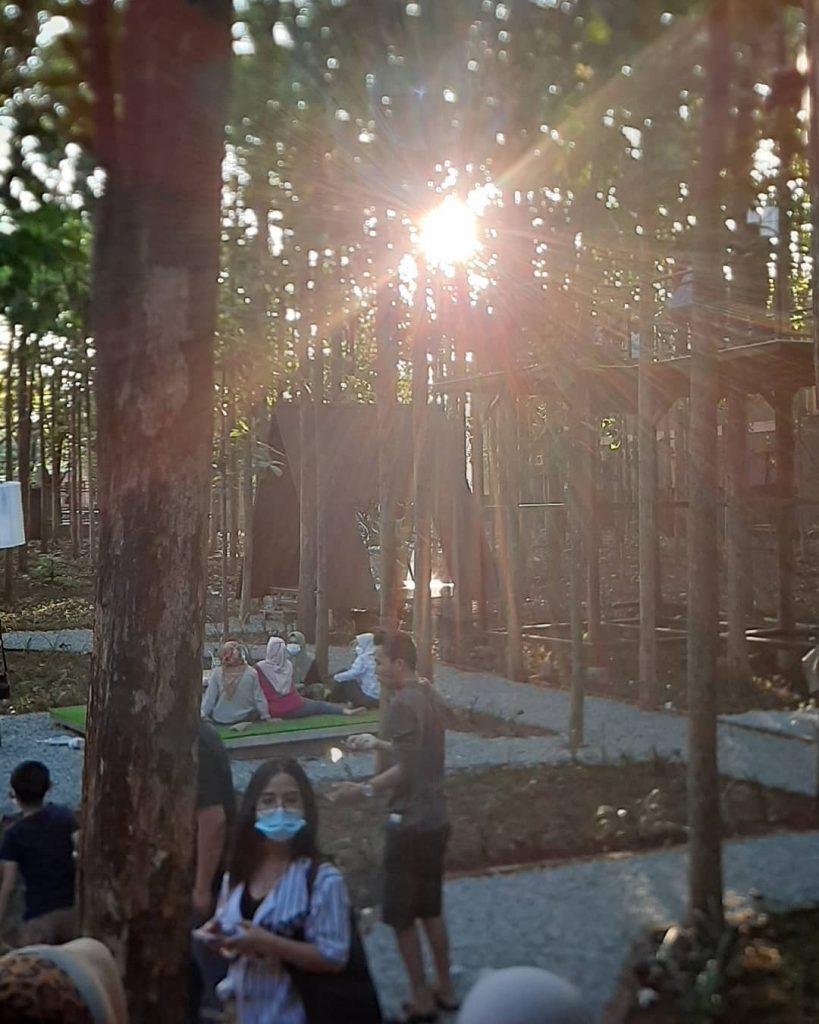 alamat hutan jati cafe purwakarta